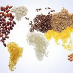 World Food Day: The Political Economy of World Hunger